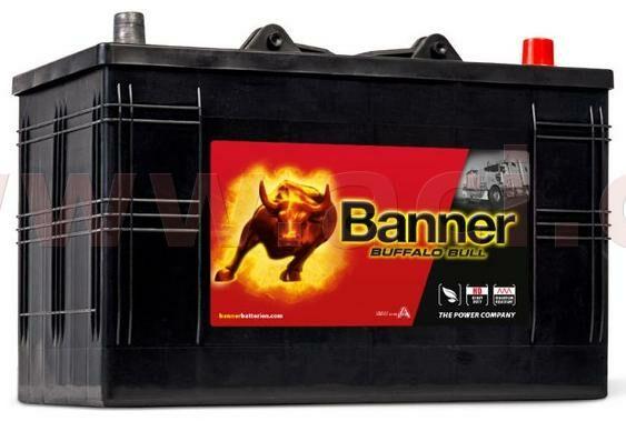 Obrázek produktu 110Ah baterie 800A, pravá BANNER Buffalo Bull 344x172x214(230) 61047