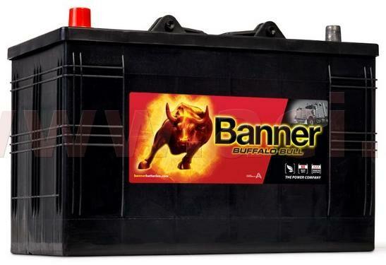 Obrázek produktu 110Ah baterie 800A, levá BANNER Buffalo Bull 344x172x214(230) 61048